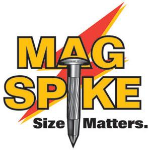 Mag Spike by Chrisnik. Magnetized nail for easy detection with large center point.  Makes it great for control points and property corners.