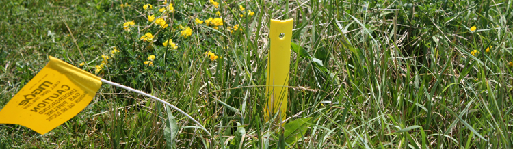 Plastic stake for marking underground gas utilities